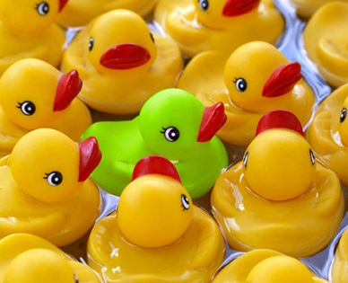 Top Tip #3 Be the Green Duck and know your USP