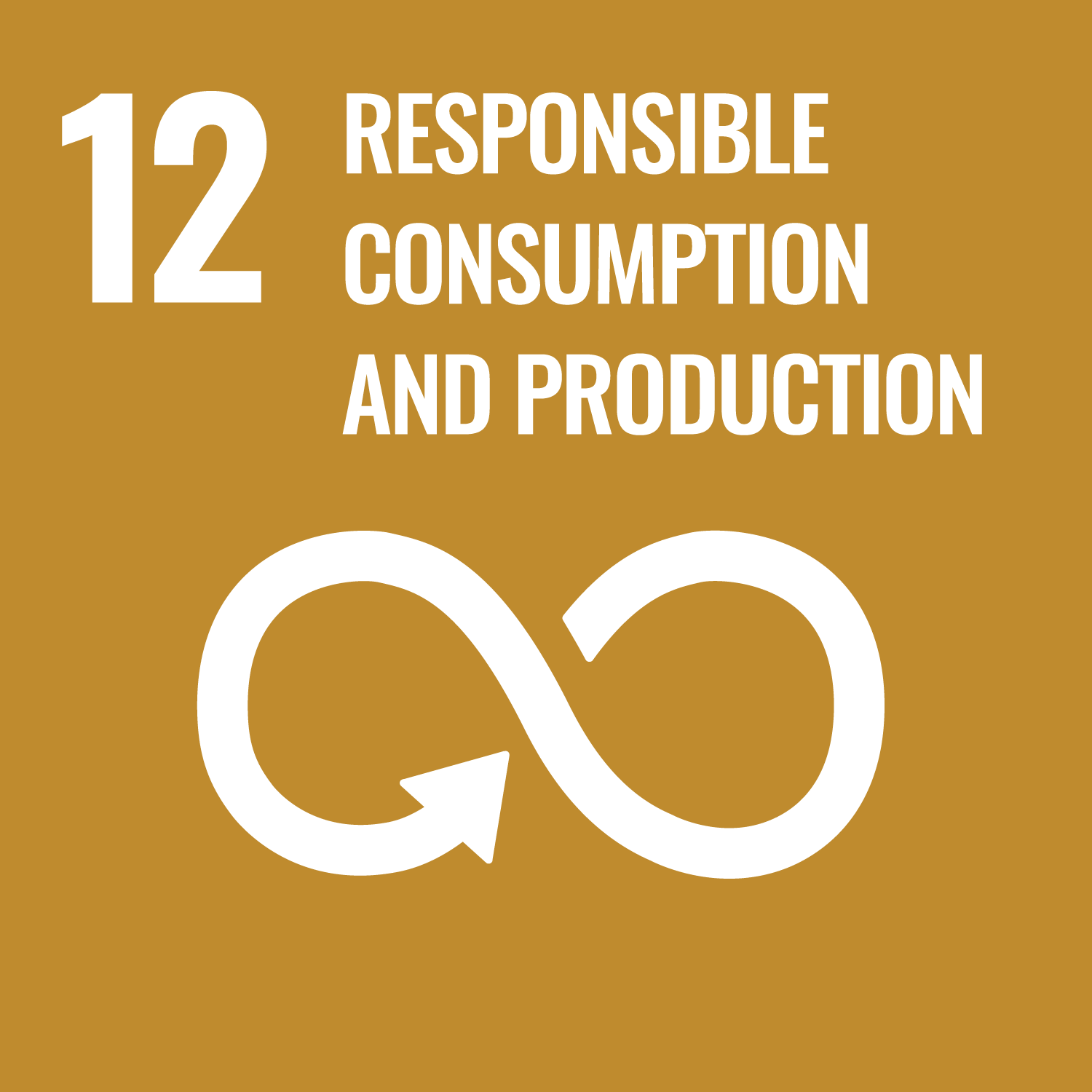 Responsible Consumption And Production - UN Sustainable Development Goal 12