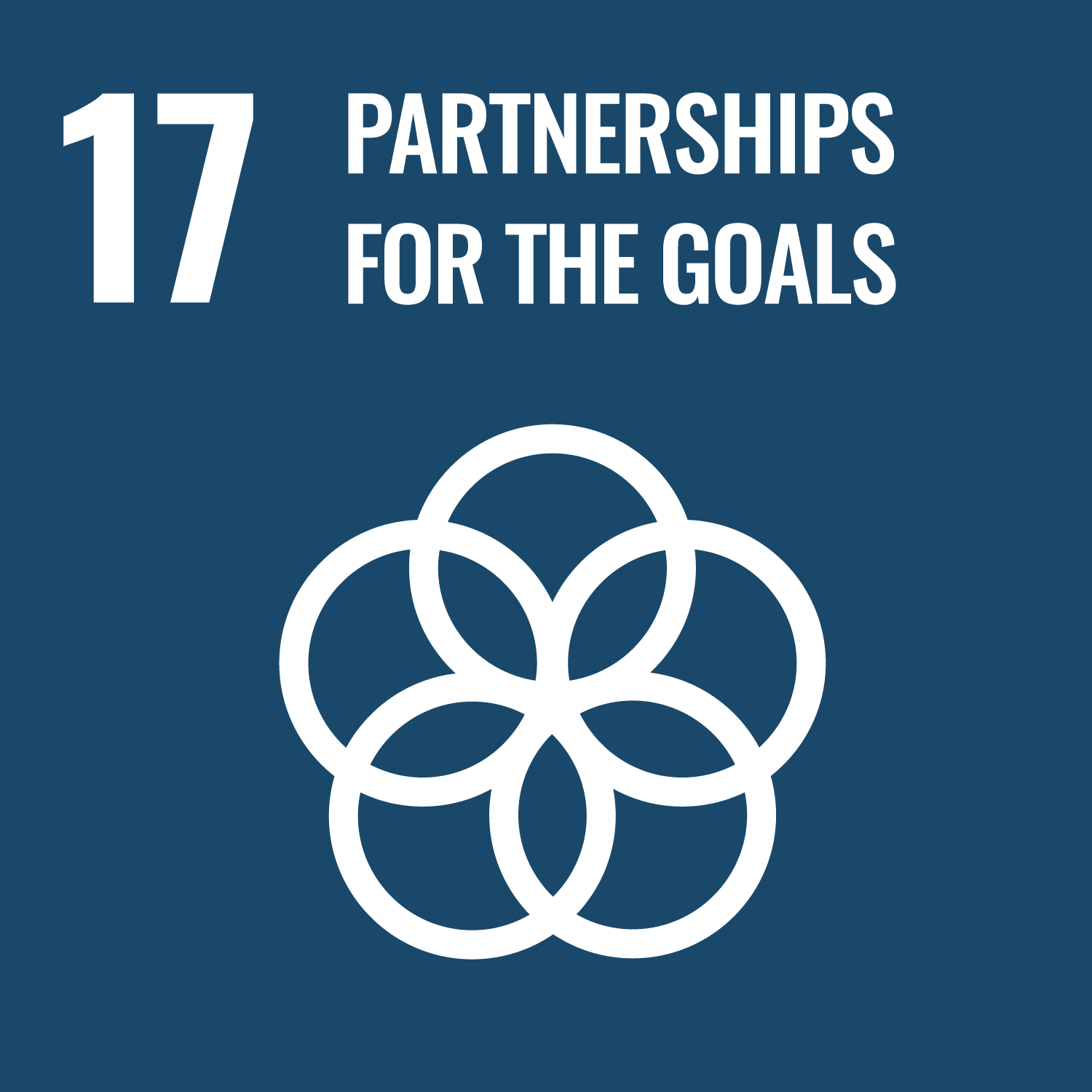 Partnerships For The Goals – UN Sustainable Development Goal 17
