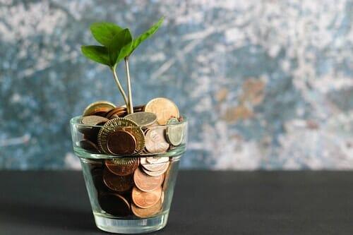 Green Zebra Bluebells header - business sustainability that makes sense